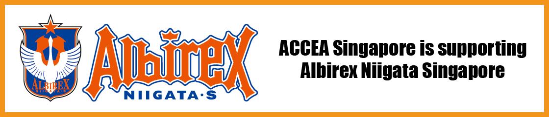 ACCEA ALBIREX